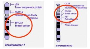 BRCA genai