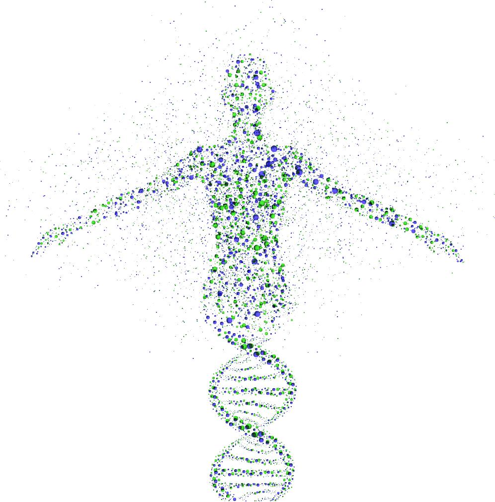Žmogaus genetika
